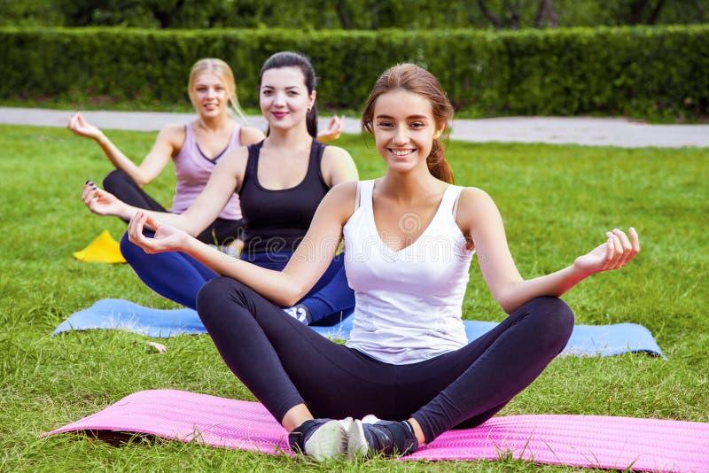 做在绿草的小组美丽的健康黏的妇女exersices在公园,选址在莲花姿势和凝思,看 库存图片