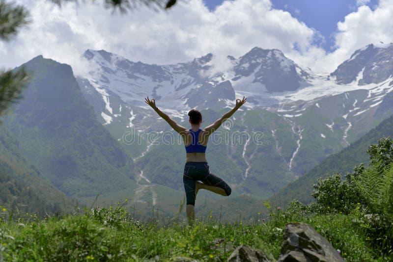 做在绿草的年轻体育妇女瑜伽在夏天 免版税库存图片