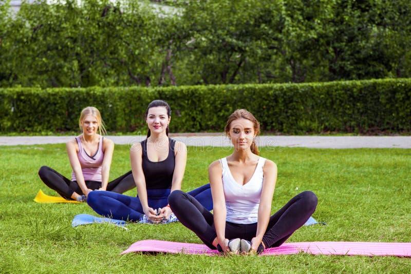 做在绿草的美丽的健康黏的妇女的格鲁普exersices在公园,选址在莲花姿势的席子和 免版税库存照片