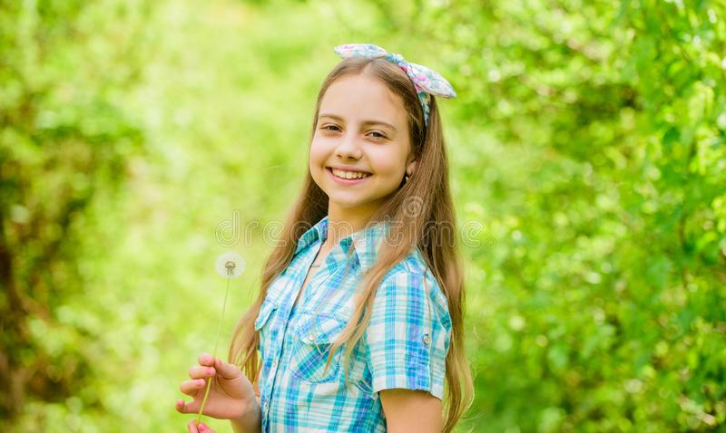 做愿望和吹蒲公英自然背景的女孩土气样式 人们为什么在蒲公英祝愿 庆祝夏天 图库摄影
