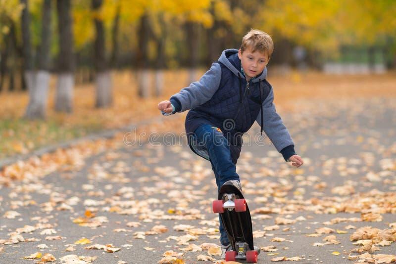做滑板把戏的男孩在公园 免版税库存照片