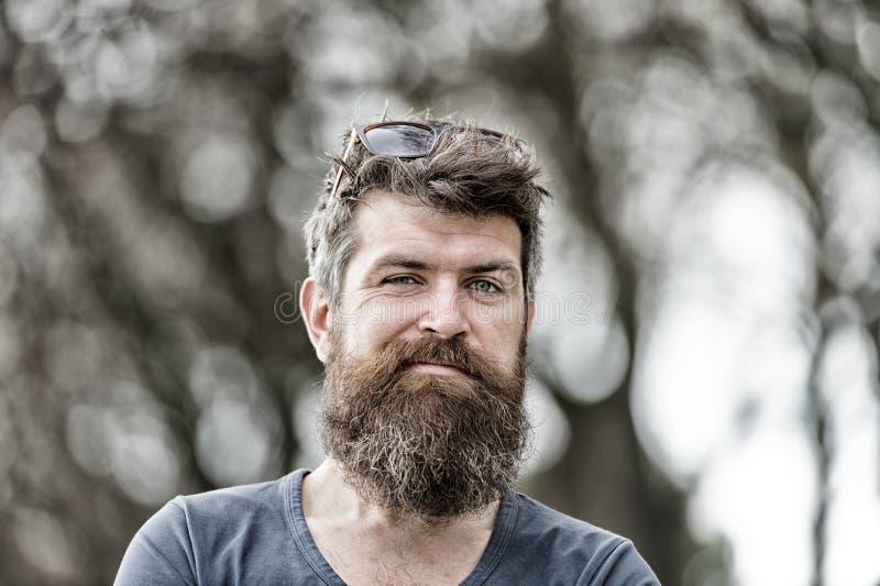 做滑稽的面孔,皱眉和抬他的眼眉的有胡子的人 英俊的人特写镜头画象有长的胡子的 库存图片
