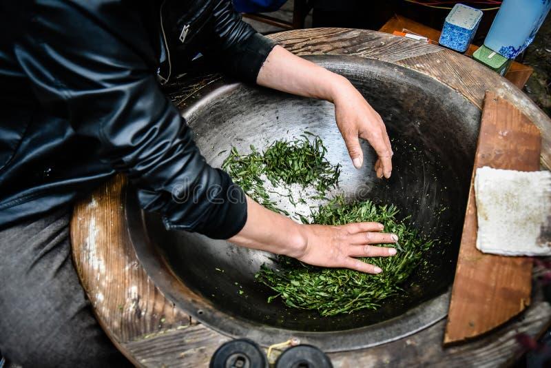 做烘干的传统茶在用手处理在龙井村的平底锅的绿茶在杭州中国 免版税库存图片