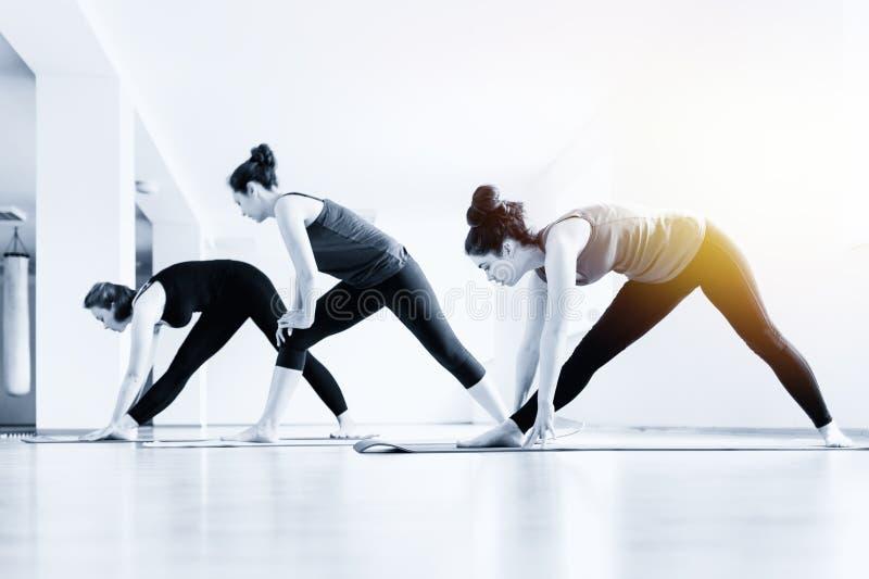 做瑜伽的一个小组年轻女人在教室 体育生活方式、健康和瑜伽实践的概念 ?? 图库摄影