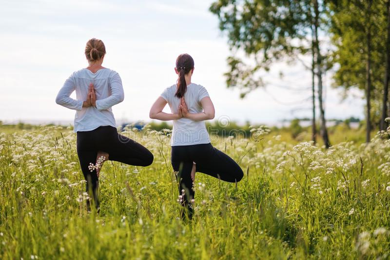 做瑜伽的两名妇女le在自然公园行使,站立在一条腿在户外 库存图片