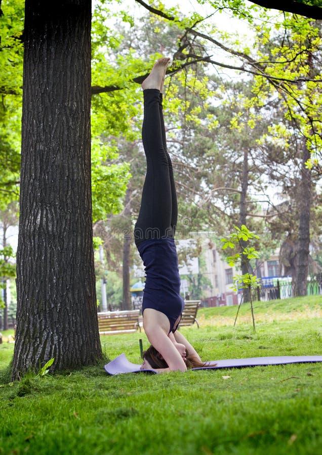 做瑜伽的少妇在早晨公园 免版税库存图片