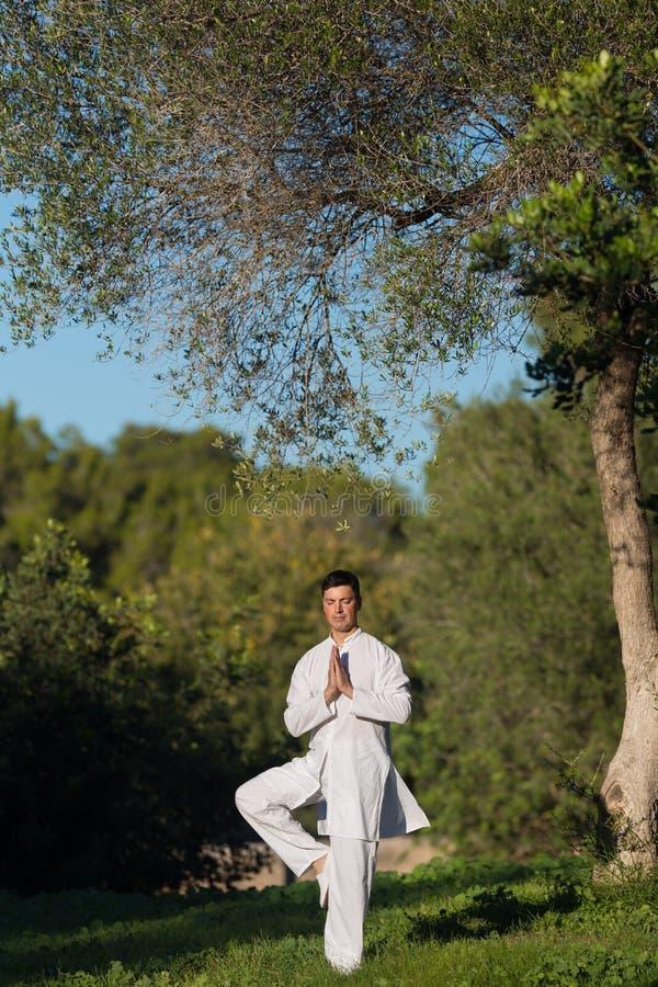 做瑜伽的年轻人在公园 库存图片