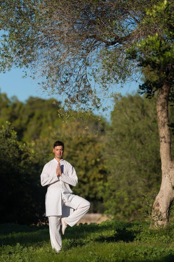 做瑜伽的年轻白种人人在公园 库存照片