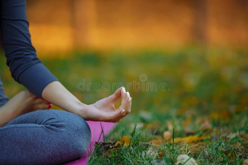 做瑜伽锻炼的年轻实习者在公园 妇女思考美好的秋天自然室外infront  现有量 库存照片