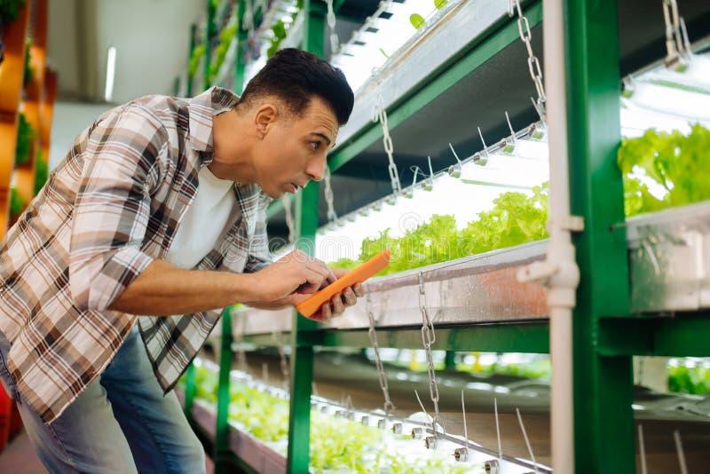 做笔记的农业学家在检查莴苣的片剂自温室 免版税库存图片