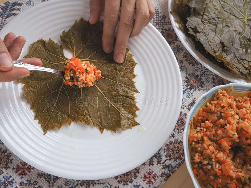 做素食dolma 巴尔干和白种人烹调 Dolma 免版税库存照片