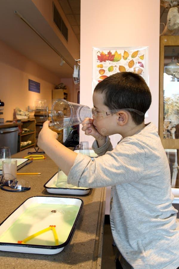 做肥皂泡的男孩 免版税库存照片