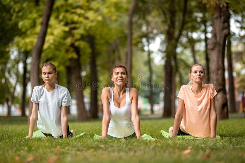 做舒展在绿草的瑜伽席子的三个年轻亭亭玉立的女孩在露天的公园 免版税库存图片