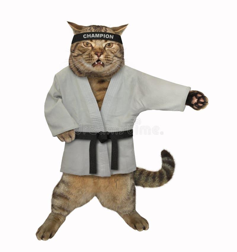 做锻炼的猫空手道 免版税图库摄影
