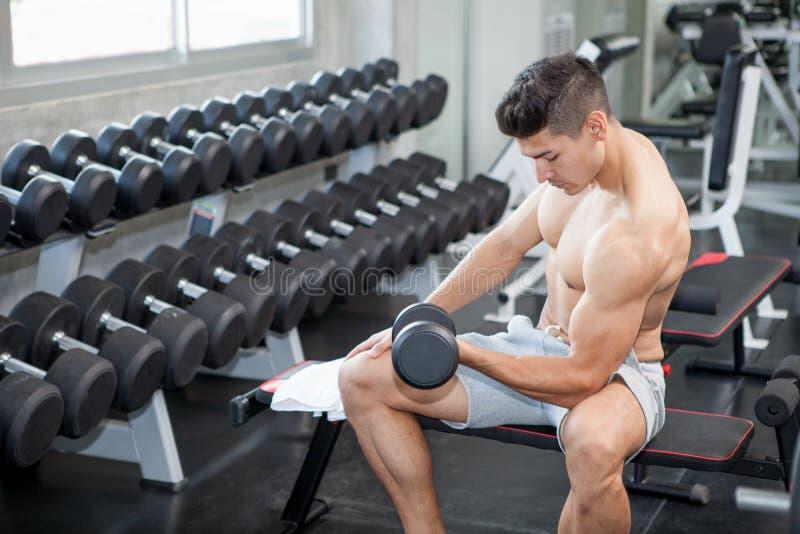 做锻炼的肌肉爱好健美者人坐与在健身房的举重哑铃 赤裸上身的体育年轻健身人训练 免版税库存图片