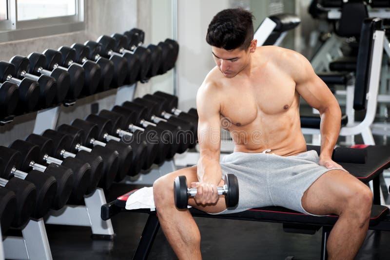 做锻炼的肌肉爱好健美者人坐与在健身房的举重哑铃 赤裸上身的体育年轻健身人训练 图库摄影