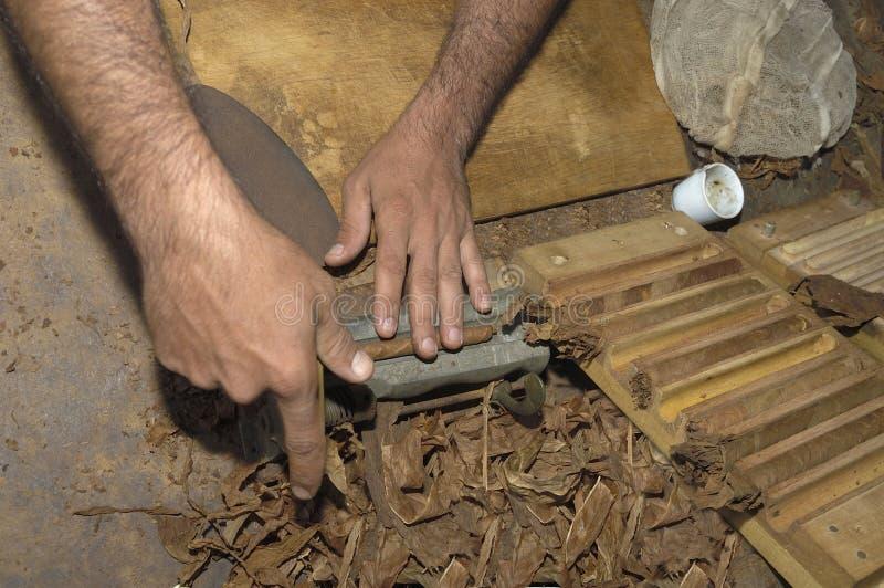 做雪茄的手特写镜头由烟草离开 图库摄影