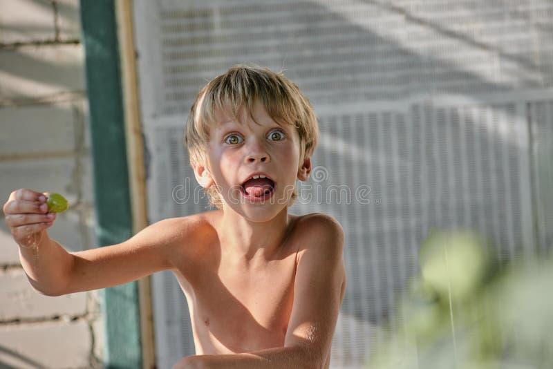 做鬼脸的男孩用葡萄 库存图片