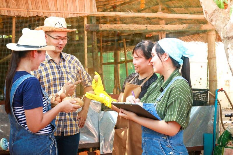 做鸡鸡蛋的农夫小组 库存照片