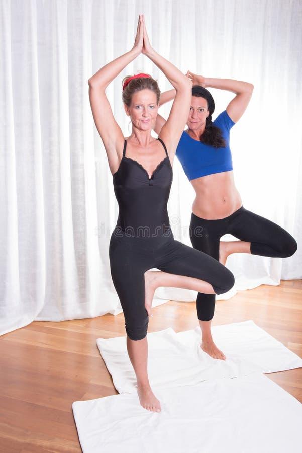 做他们的锻炼的两名可爱的妇女 库存照片