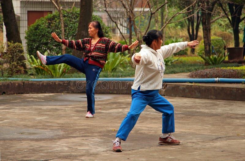 做tai池氏的中国妇女在公园 图库摄影