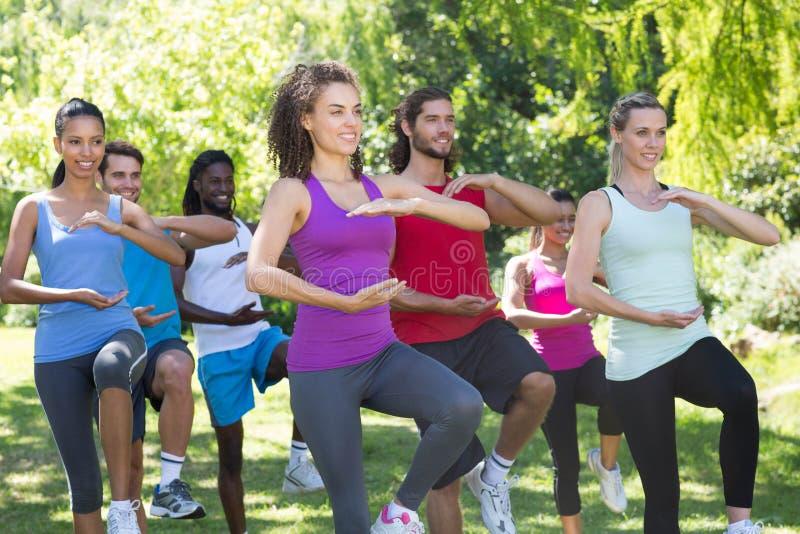 做tai池氏的健身小组在公园 库存图片