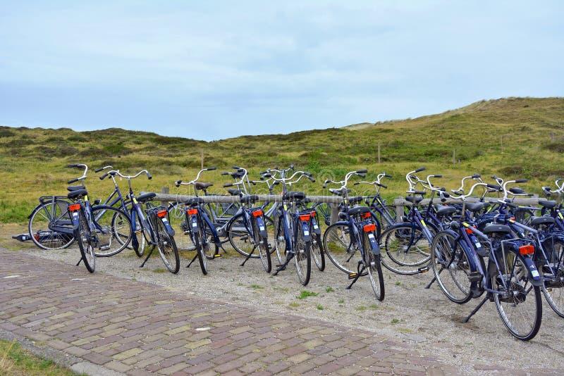 停放在缺一不可的自然保护前面的许多相同出租自行车 免版税库存照片