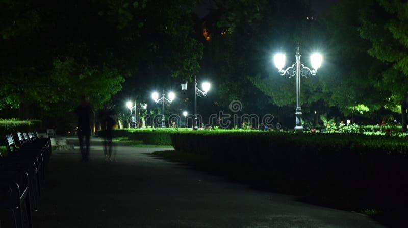 停放夜街灯布拉索夫中央公园胡同长凳树 库存图片