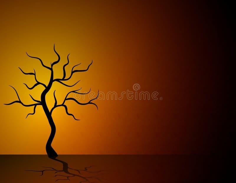 停止的沙漠唯一结构树 皇族释放例证