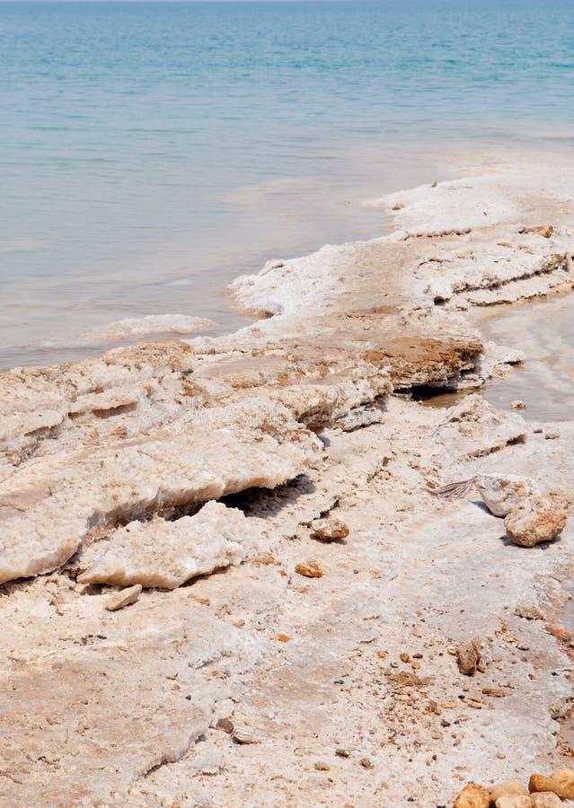 停止的盐海运 免版税库存图片