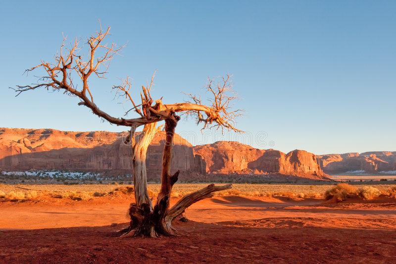 停止的纪念碑结构树谷 免版税库存图片