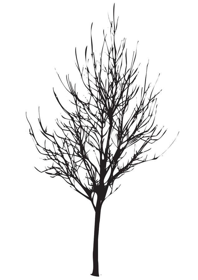 停止的结构树 向量例证