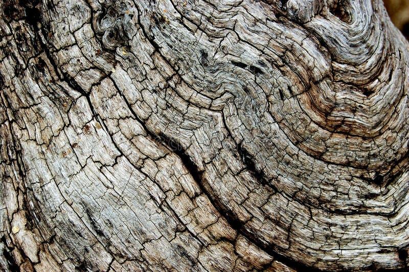 停止的详细资料木头 免版税图库摄影