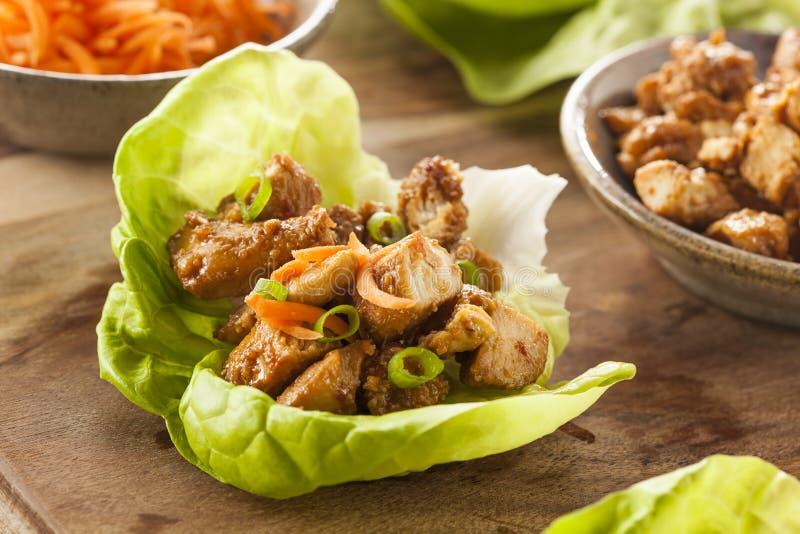 健康亚洲鸡莴苣套 免版税库存照片