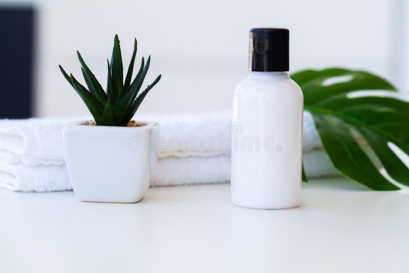 健康产品和化妆用品 草本和矿物skincare Ja 库存图片