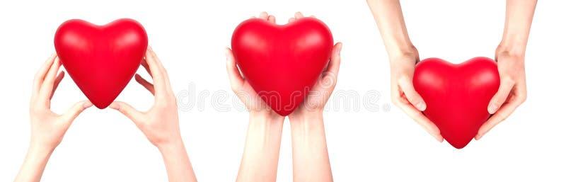 健康保险或爱概念 库存照片