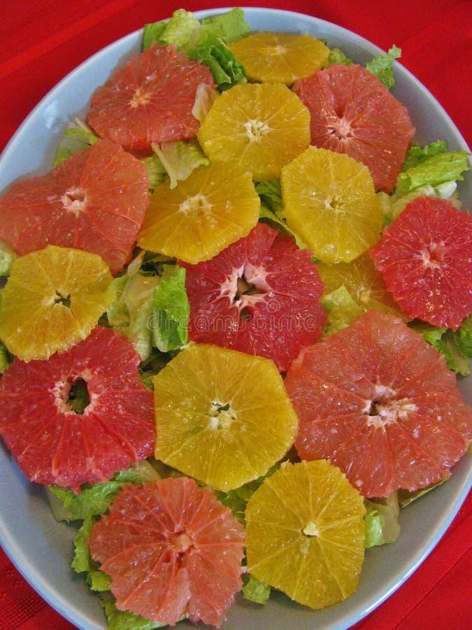 健康冬天柑桔沙拉 免版税图库摄影