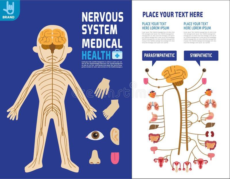 健康医疗传染媒介infographic元素设计例证 皇族释放例证