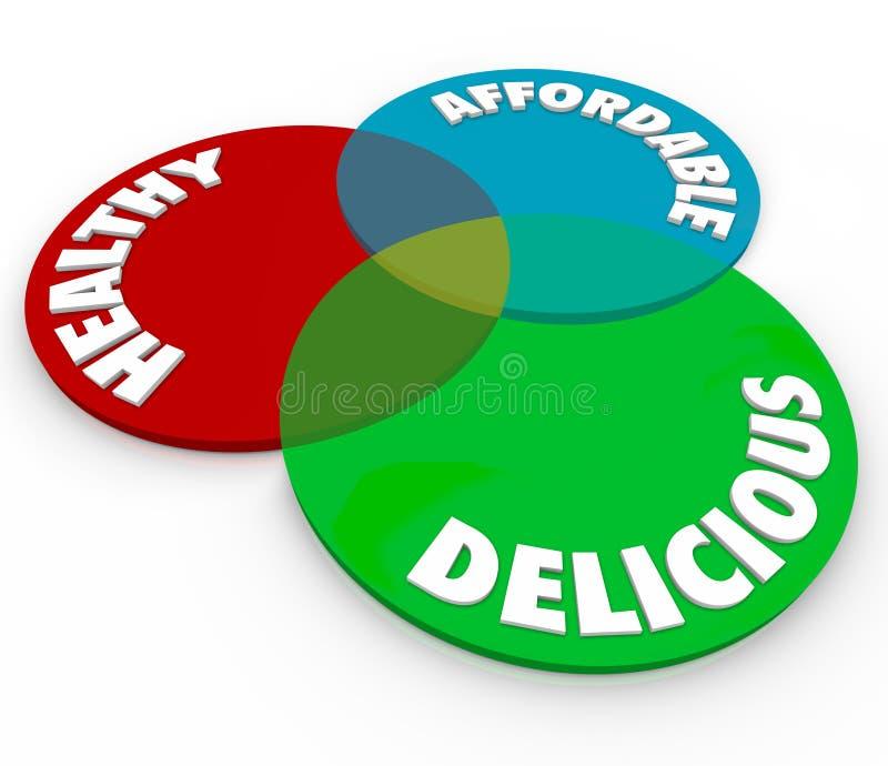 健康可口付得起的Venn图食物吃营养 库存例证