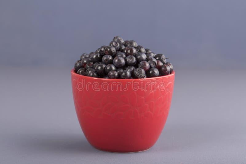 健康吃,食物,节食和新鲜素食的概念-,在碗,野生莓果,特写镜头的成熟蓝莓 在gr的新鲜的蓝莓 免版税库存图片