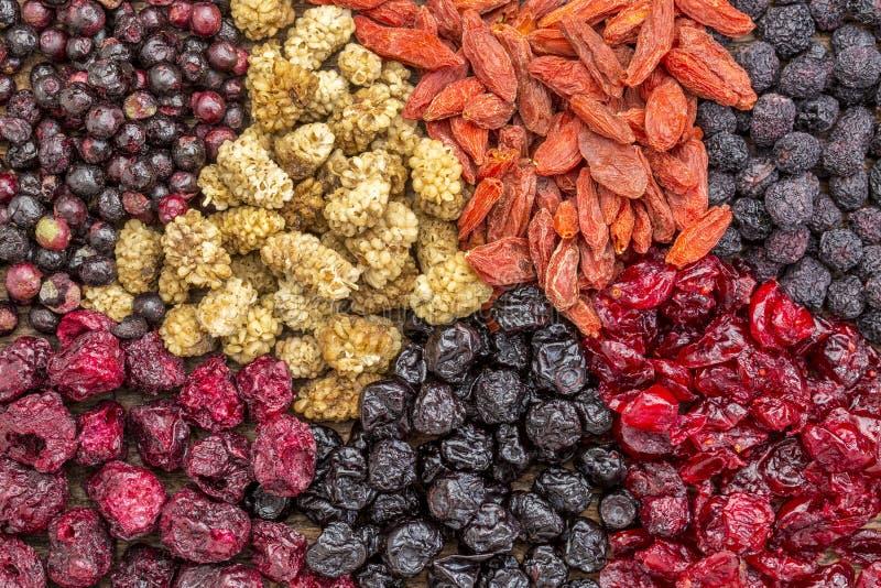 健康干superfruit莓果 免版税库存图片