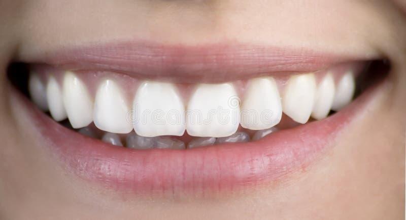健康微笑 免版税图库摄影