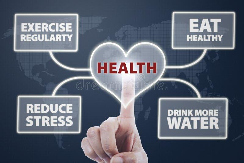 健康心脏 免版税库存图片