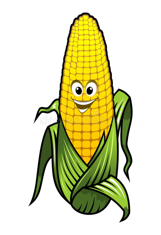 健康新鲜的黄色玉米菜 皇族释放例证