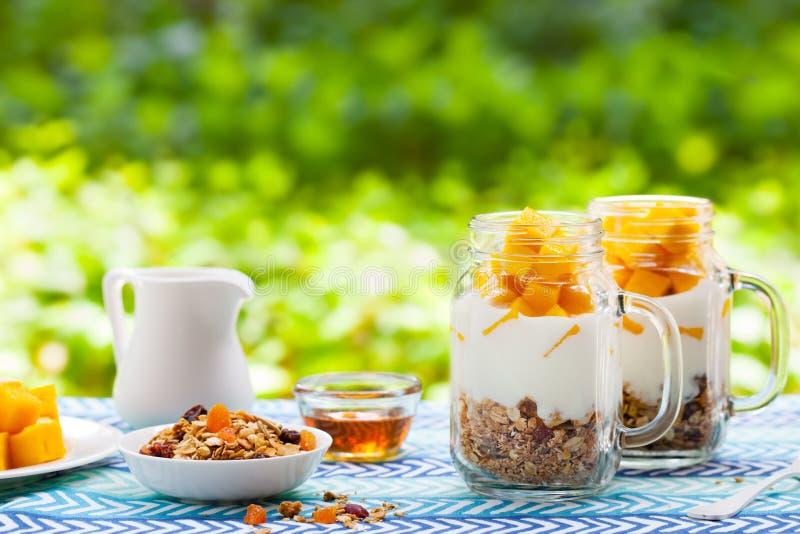 健康早餐,点心 新鲜的芒果果子用酸奶和格兰诺拉麦片在瓶子 r r 图库摄影