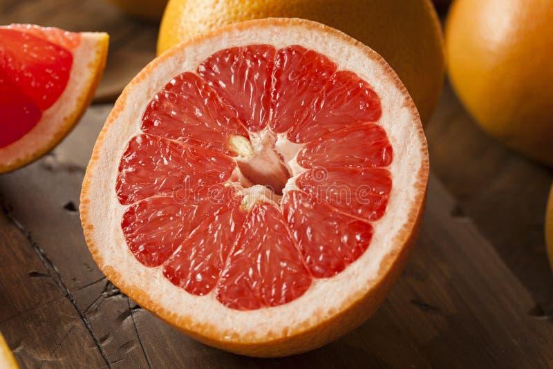 健康有机红色红宝石葡萄柚 库存图片