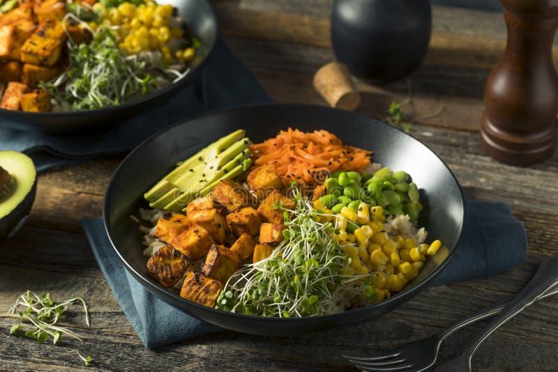 健康有机豆腐和米菩萨碗 免版税库存照片