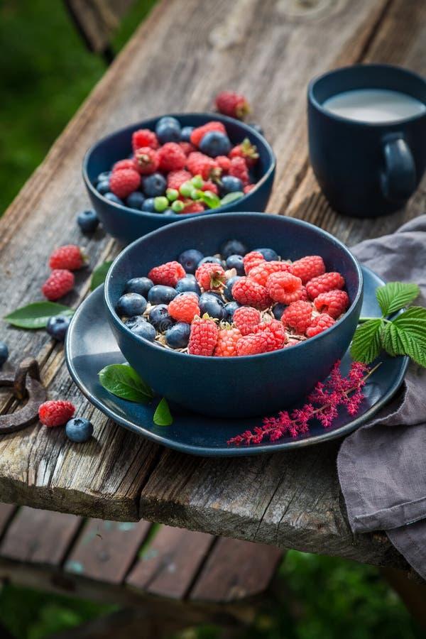 健康燕麦剥落早餐在夏天庭院里 免版税库存照片