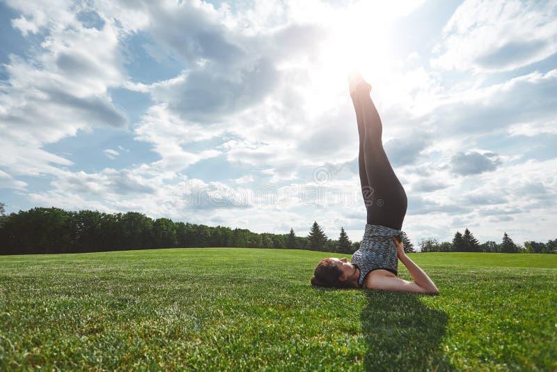 健康生活方式 实践在绿色草坪的体育衣裳的年轻女人瑜伽开放领域的在一个晴朗的早晨 瑜伽 免版税图库摄影