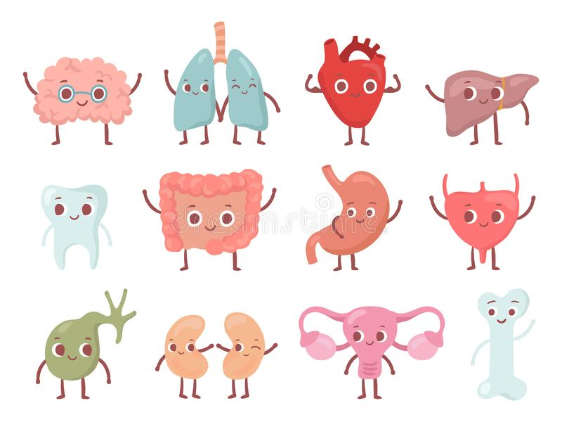 健康生物器官 微笑的肺、愉快的心脏和滑稽的脑子 微笑器官动画片被隔绝的字符传染媒介集合 向量例证